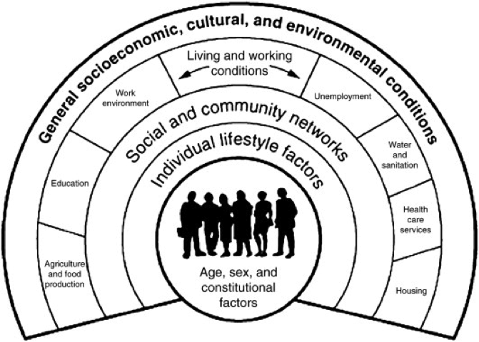 Model outlining the Social Determinants of Health